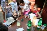 Napközis táborok az Árnyasban